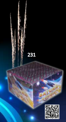 trist231